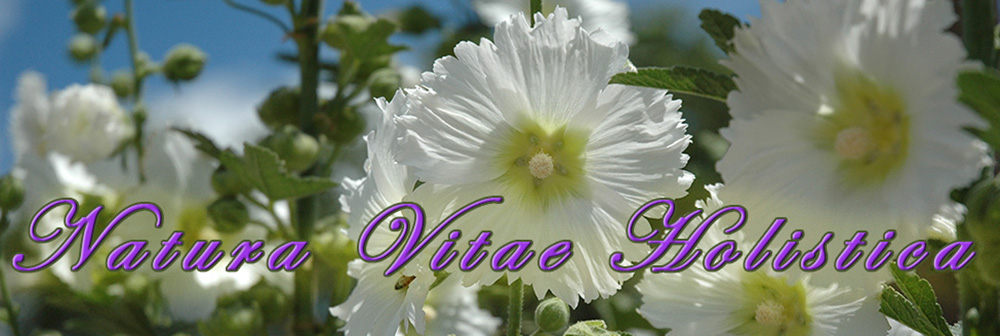 Natura_Vitae_Holistica_Alternative_Therapy